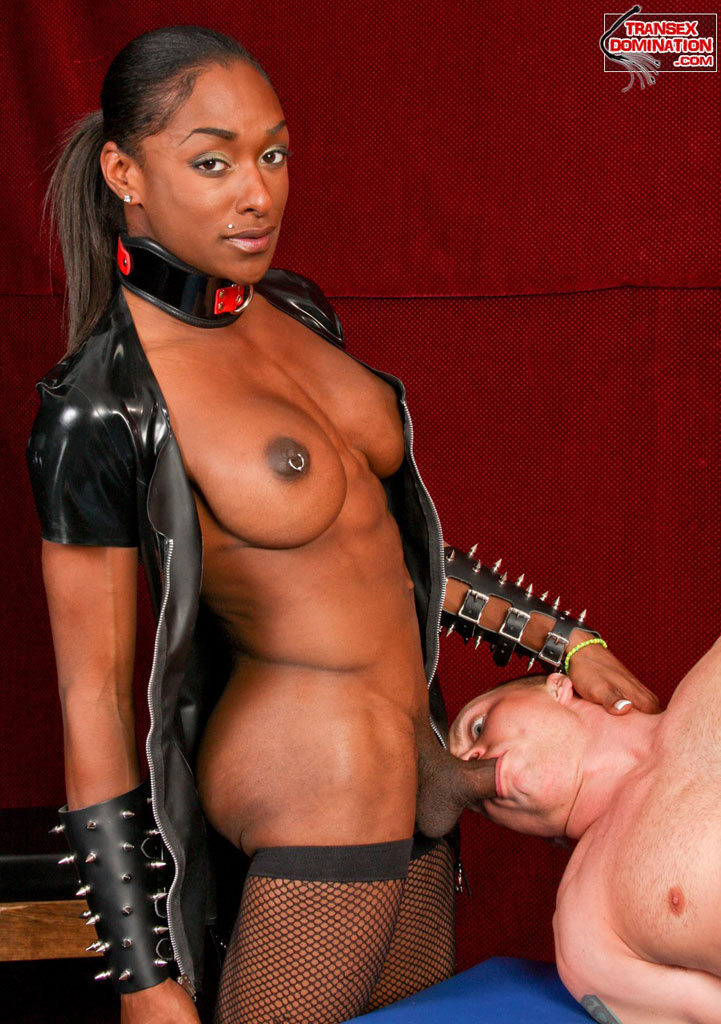 Bdsm Shemales Right 57